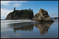 Sea stacks reflected on wet beach, Ruby Beach. Olympic National Park ( color)