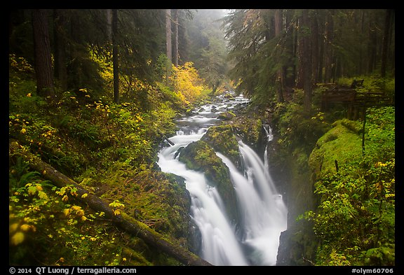 Sol Duc Falls in autumn. Olympic National Park (color)