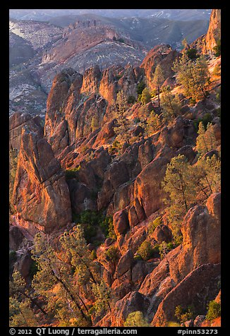 Rocky spires at sunset. Pinnacles National Park (color)
