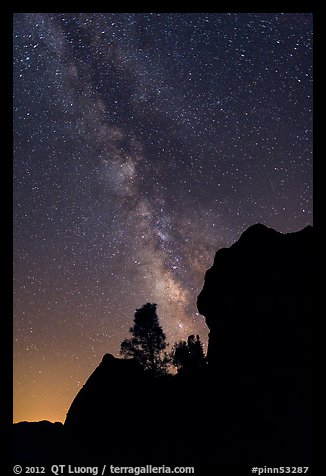 Rocks and pine trees profiled against starry sky with Milky Way. Pinnacles National Monument, California, USA (color)
