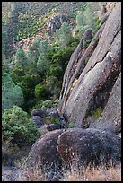 Cliff and Mediterranean chaparral. Pinnacles National Park ( color)