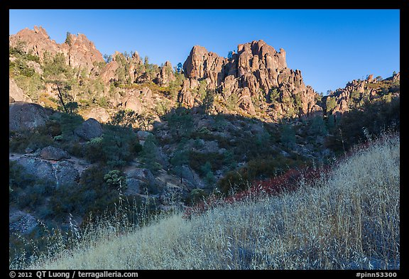 Summer grasses and pinnacles, early morning. Pinnacles National Park (color)