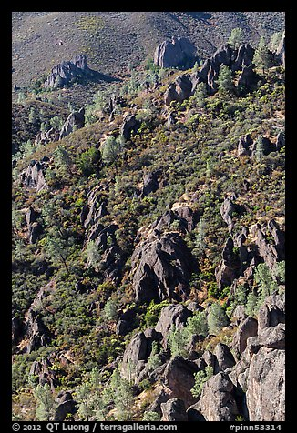 Slope with mediterranean chaparral and rock towers. Pinnacles National Park (color)