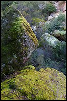 Boulders in gully, Bear Gulch. Pinnacles National Park, California, USA. (color)