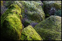Moss-covered boulders, Bear Gulch. Pinnacles National Park, California, USA. (color)