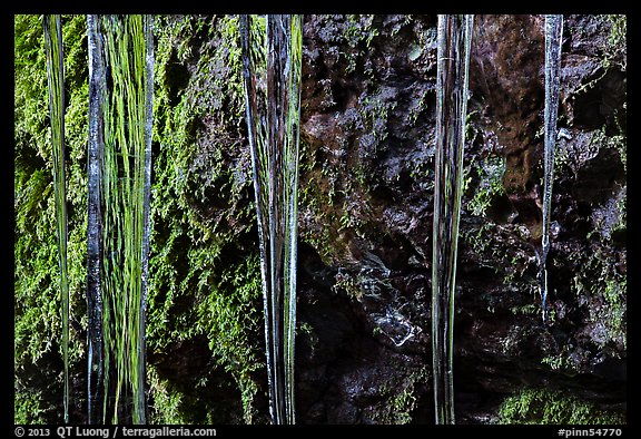 Icicles and moss, Balconies Cave. Pinnacles National Park (color)