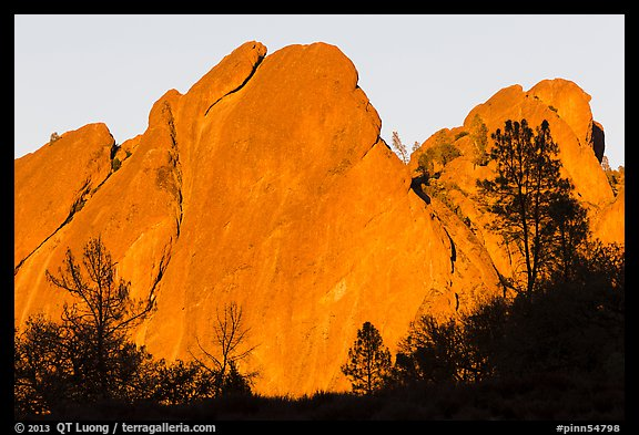 Trees against rocks glowing from sunset. Pinnacles National Park (color)