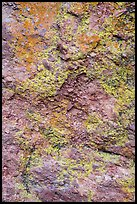 Colorful lichen and rock. Pinnacles National Park ( color)