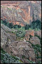 Cliffs and trees. Pinnacles National Park ( color)