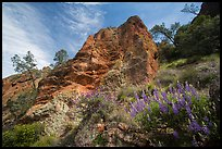 Lupine and rock towers in Juniper Canyon. Pinnacles National Park, California, USA.