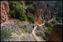 Hiker on trail in spring. Pinnacles National Park, California, USA. (color)