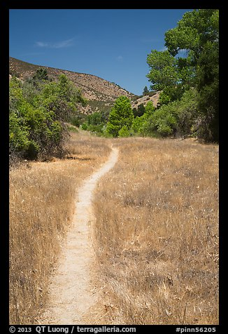 South Wilderness trail. Pinnacles National Park (color)