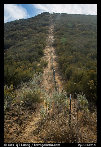 Pig fence climbing steep hill. Pinnacles National Park (color)