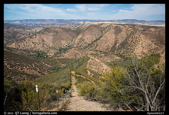 Steep hill and pig exclusion fence. Pinnacles National Park (color)