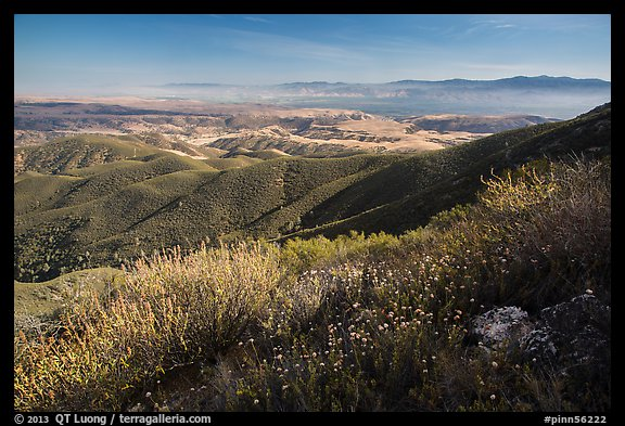 Wildflowers and Salinas Valley. Pinnacles National Park (color)