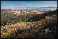 Wildflowers and Salinas Valley. Pinnacles National Park ( color)