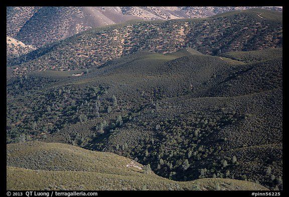 Forested hills seen from above. Pinnacles National Park (color)