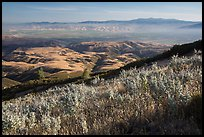 View over Salinas Valley from South Chalone Peak. Pinnacles National Park ( color)