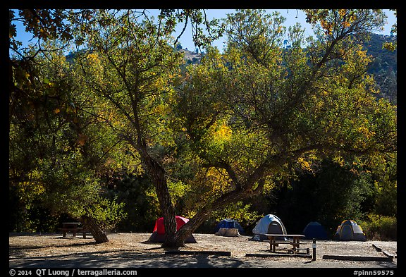 Campground. Pinnacles National Park (color)
