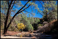 Dry Chalone Creek along Old Pinnacles Trail in autumn. Pinnacles National Park, California, USA.