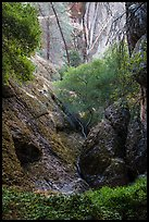 Creek and rocks near Balconies Cave. Pinnacles National Park ( color)