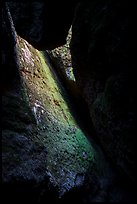Mossy slab, Bear Gulch Lower Cave. Pinnacles National Park ( color)