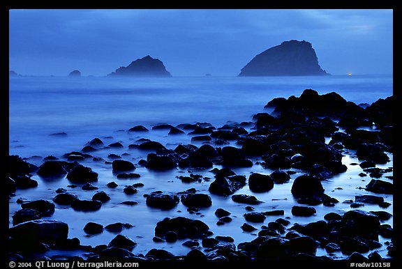 Rocks and sea stacks, blue hour, False Klamath Cove. Redwood National Park, California, USA.