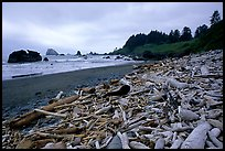 Driftwood, Hidden Beach. Redwood National Park, California, USA.