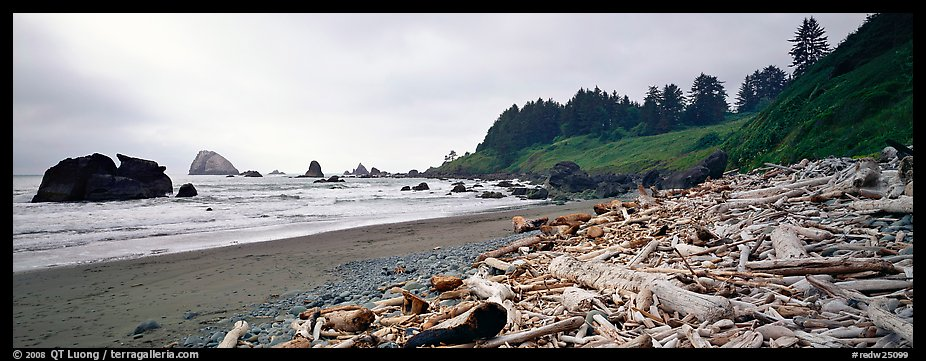 Beach with driftwood. Redwood National Park (color)