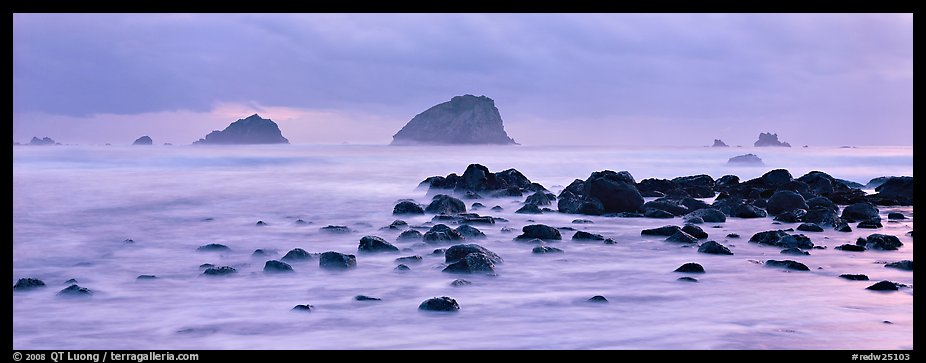 Rocks and seastacks at dusk. Redwood National Park (color)