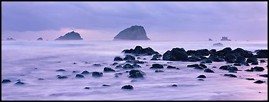 Rocks and seastacks at dusk. Redwood National Park (Panoramic color)
