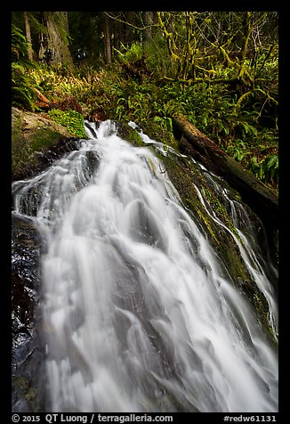 Upper cascades of Fern Falls , Jedediah Smith Redwoods State Park. Redwood National Park (color)