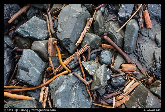 Close-up of driftwood, kelp, and rocks, Enderts Beach. Redwood National Park (color)