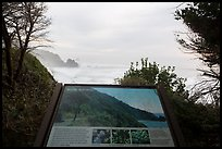 Coastline and Sturdy survivors interpretive sign. Redwood National Park ( color)