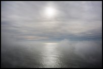 Veilled sun and fog floating above Ocean. Redwood National Park ( color)