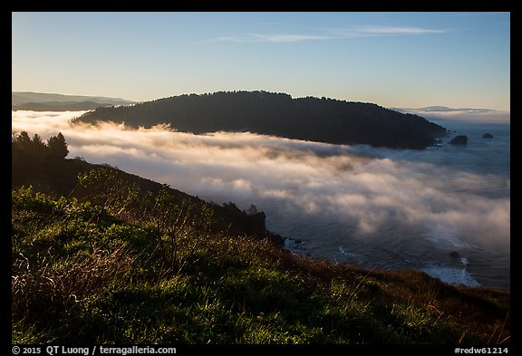 Sea of clouds at the mouth of Klamath River. Redwood National Park (color)