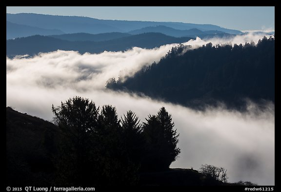 Ridges and low fog, Klamath River valley. Redwood National Park (color)