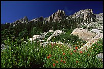 Alta Peak range. Sequoia National Park ( color)
