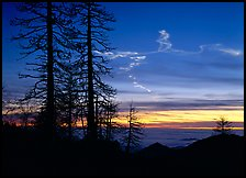 Sky trails at sunset. Sequoia National Park, California, USA. (color)
