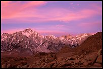 Alabama hills and Sierras, winter sunrise. Sequoia National Park ( color)