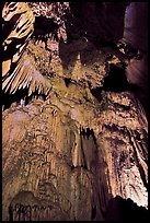 Curtain of icicle-like stalactites, Crystal Cave. Sequoia National Park, California, USA. (color)
