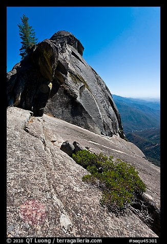 Granite slab, Moro Rock. Sequoia National Park (color)