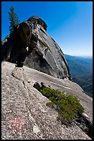 Granite slab, Moro Rock. Sequoia National Park, California, USA. (color)