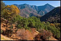 Sierra Nevada western foothills. Sequoia National Park ( color)