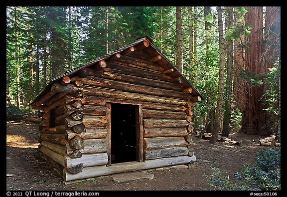 Squatters Cabin. Sequoia National Park, California, USA.