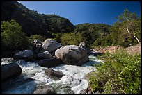 Middle Fork of Kaweah River near Hospital Rock. Sequoia National Park ( color)