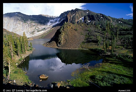Ellery Lake in summer. California, USA (color)