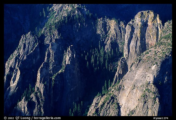 Cathedral Rocks seen from  top of El Capitan, early morning. Yosemite National Park (color)