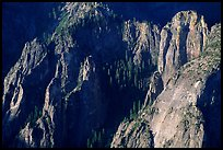 Cathedral Rocks seen from  top of El Capitan, early morning. Yosemite National Park ( color)