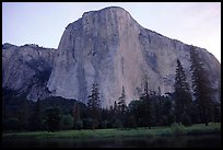 El Capitan, dawn. Yosemite National Park, California, USA. (color)